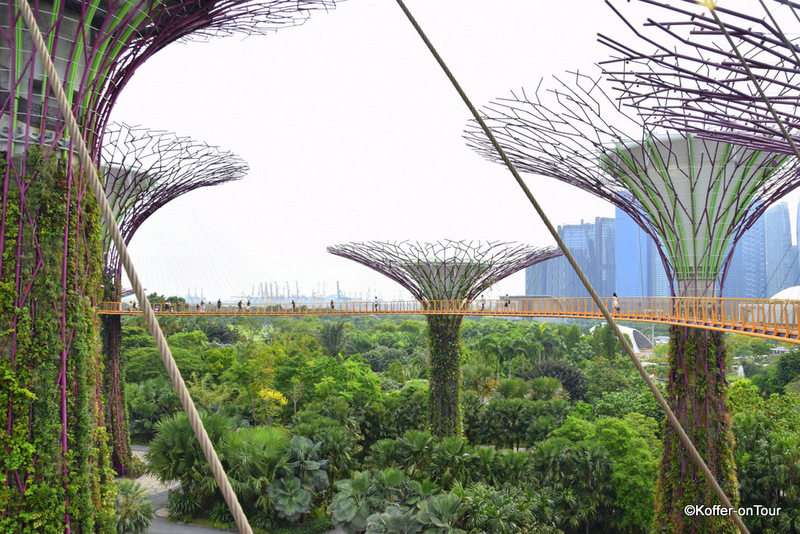 Gardens by the Bay, Supertrees, Singapur