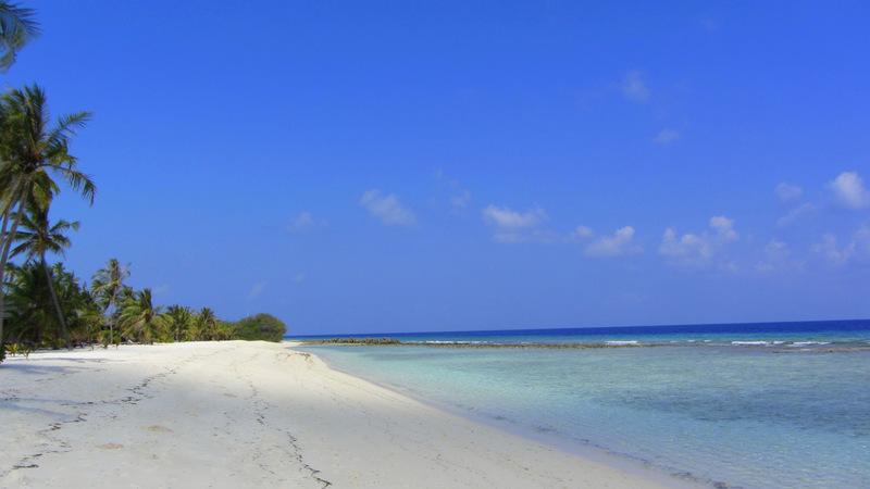 Strand, Malediven, Palmen, Bungalow, Meer