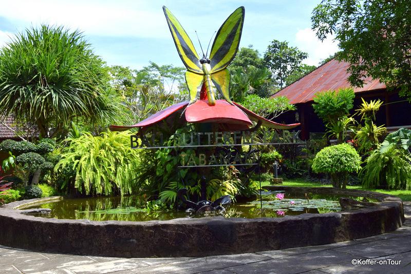 Schmetterlingspark, Bali, Tabanan, Butterfly Park