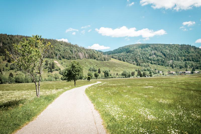 Geißenpfad, Schwarzwald, Deutschland, Black Forrest, Menzenschwander Wasserfall