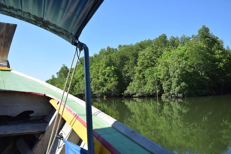 Longtailboot, Mangroven, Mangrovenwald, Thailand, Urlaub