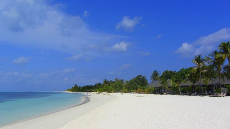 Melediven Strand Palmen Türkises Wasser Meer Sandbank weißer Sand Menschenleere Strände