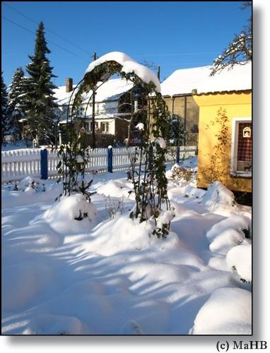2010- wieder Winter