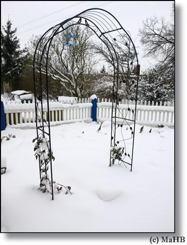 2009 - auch im Schnee schön