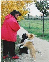 Erste Spaziergänge- noch mit Biene Hund!