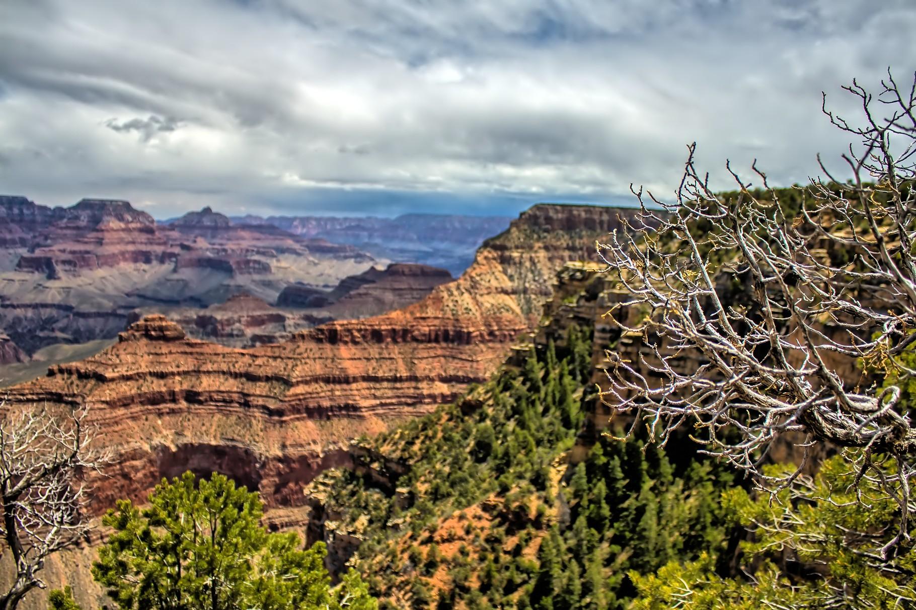 33_Grand Canyon (South Rim) in Arizona