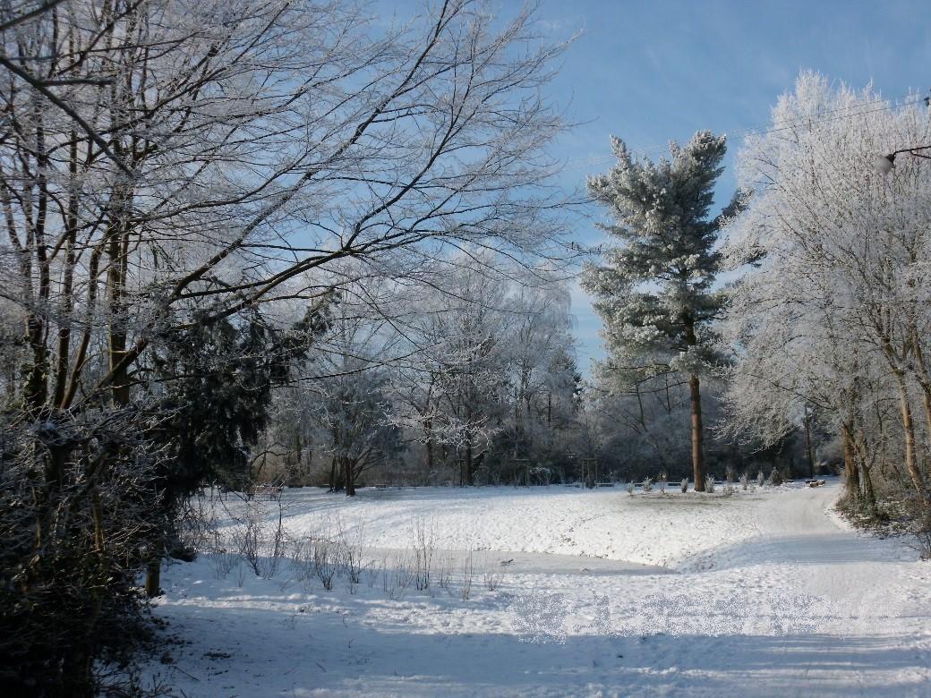 Geteteich im Winter 2016