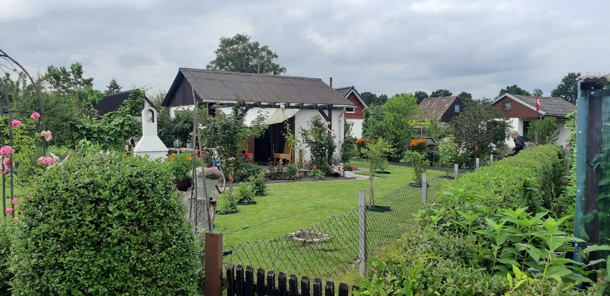 Kleingarten in der Neuanlage im Feuerdornweg in Richtung Nordwesten Juli 2021