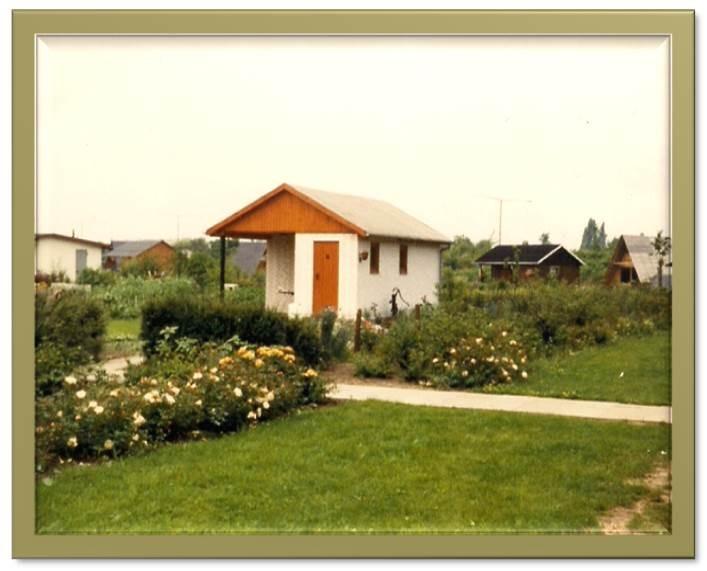 Parzellen am Feuerdornweg in Richtung Ententeich 1979