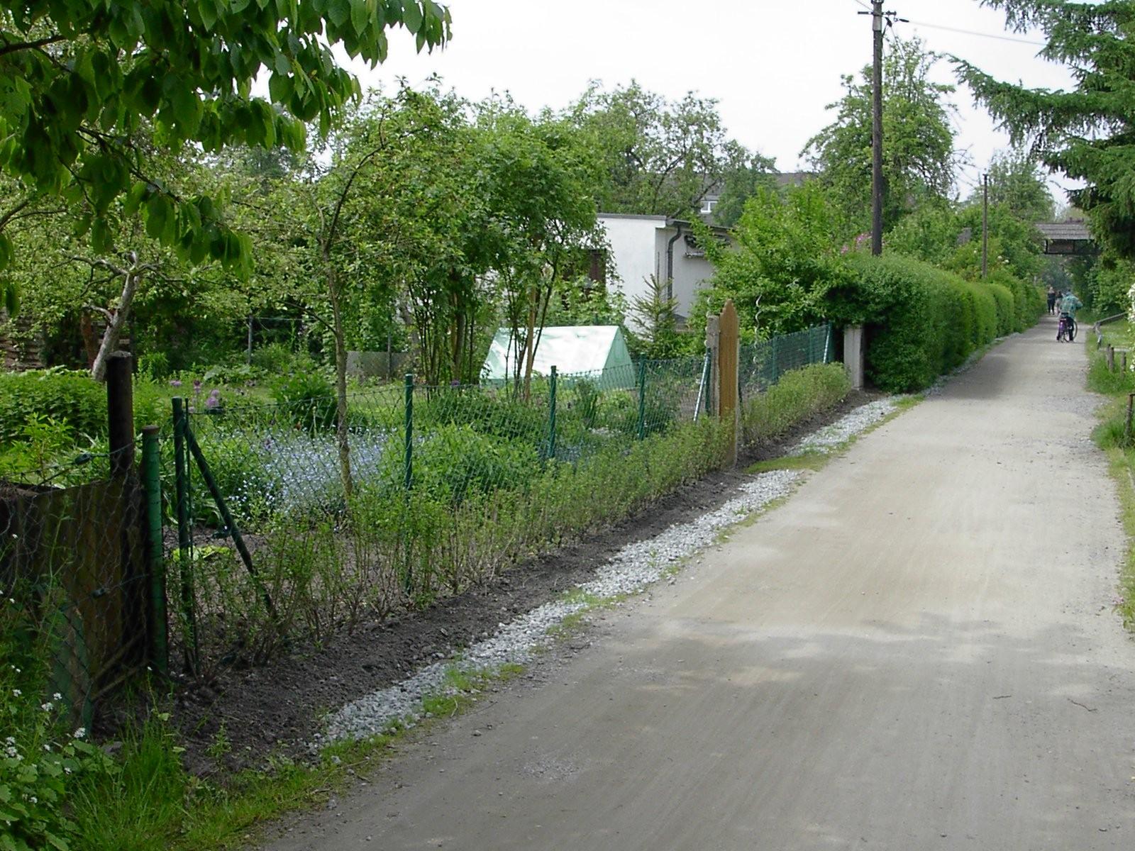Buchenweg aus der Altanlage in Richtung Stadtmitte Mai 2011
