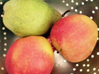 Apfel - Birnen - Gelee