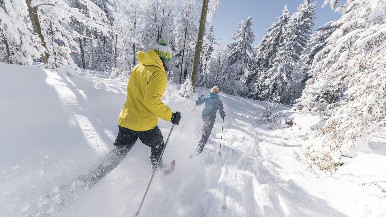 Schneeschuhwandern im Böhmerwald (c) OÖ Tourismus GmbH | Lugmayr