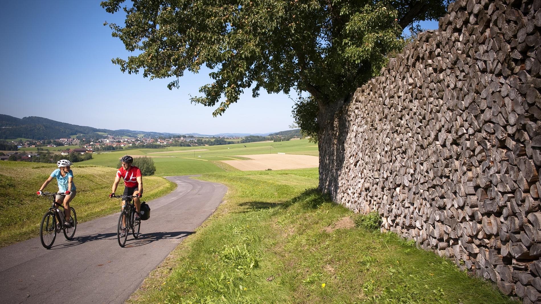 Traumhafte Radwege in der Region (c) OÖ Tourismus GmbH | Erber