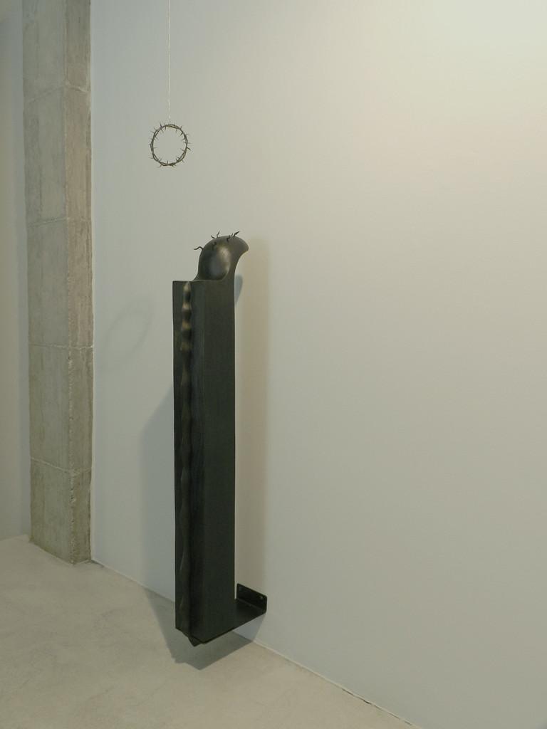 Fernando Sinaga. 'Corona de espinas'