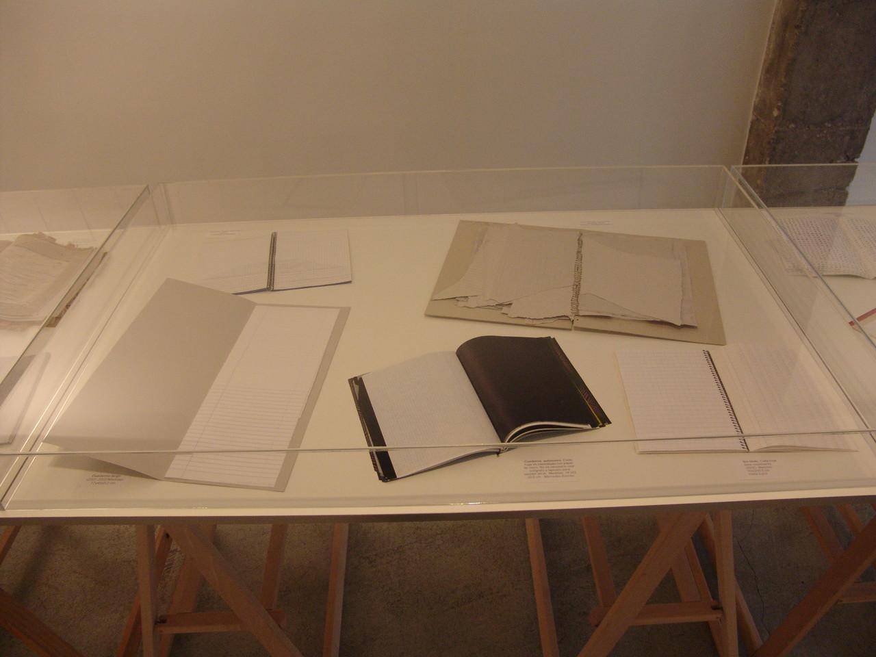 Trinidad Irisarri. 'Cuadernos'