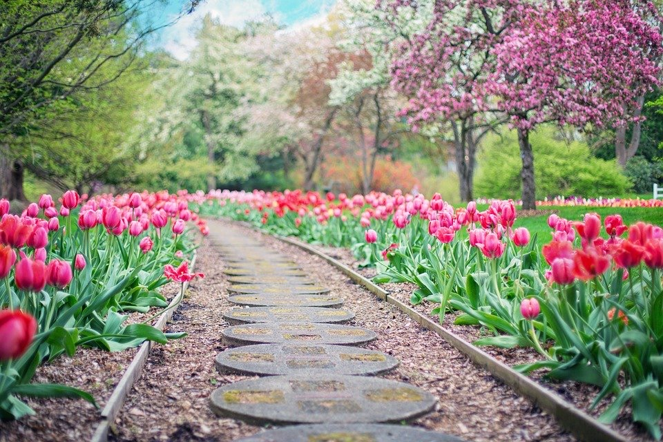 Frühling, was will in mir erblühen?