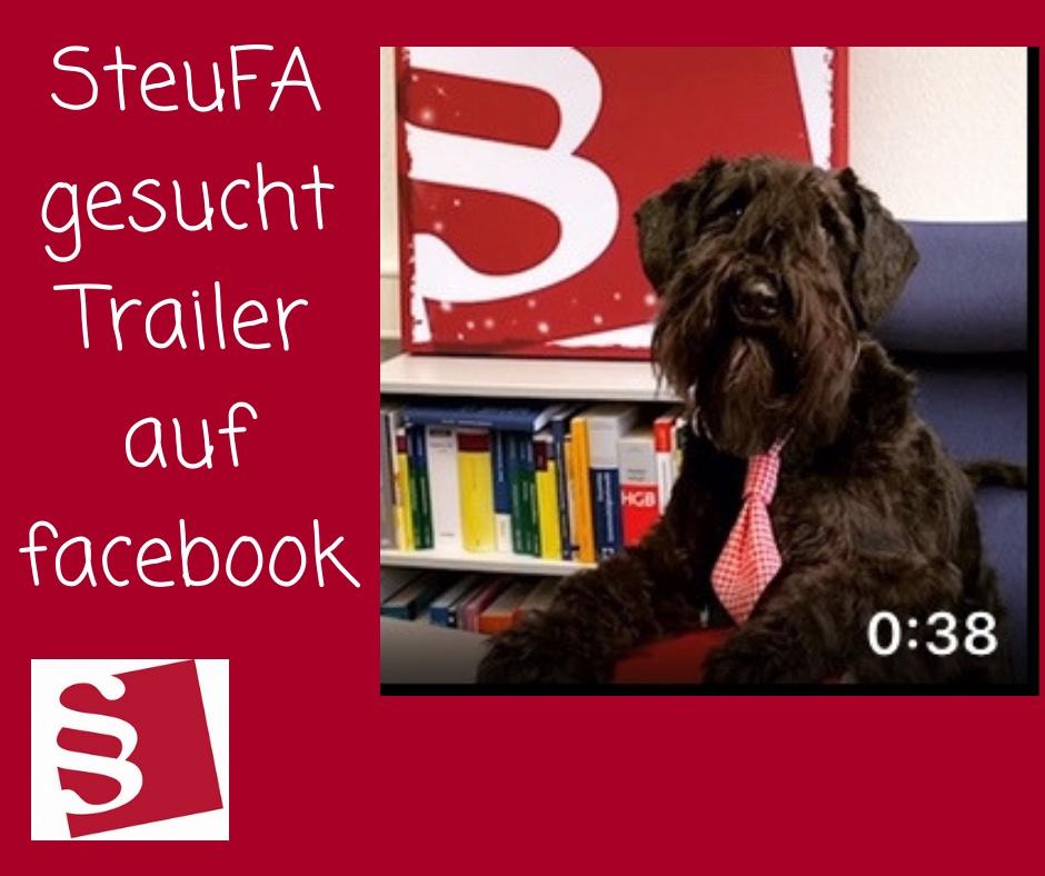 SteuFa gesucht - Facebook-Film