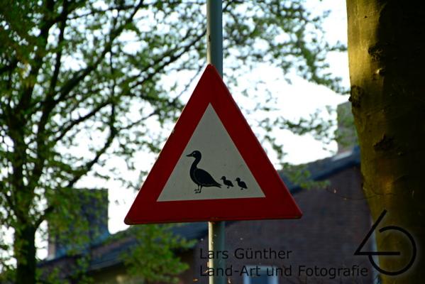Gefunden in der Niederlande