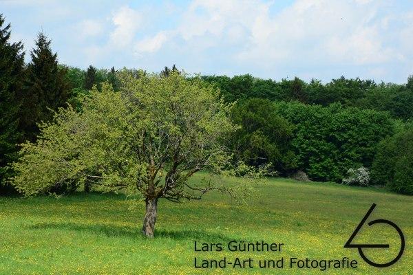 Bei Tann - Hessen