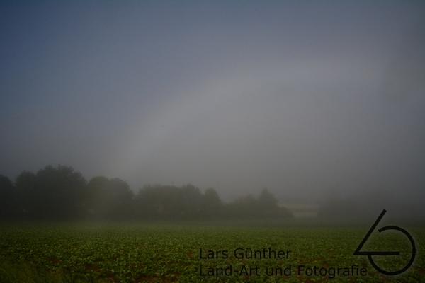 Nebelbogen