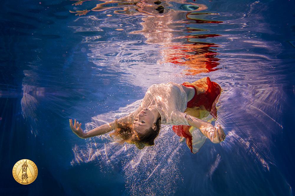 Das Siegerbild 2017. Goldmedaille beim Trierenberger Super Circuit 2017 in der Kategorie Unterwasser
