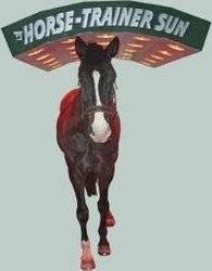 solarium pour le bien de nos chevaux