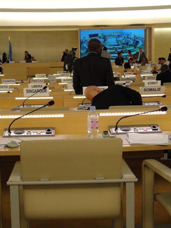 Palais des Nations - Salle XX