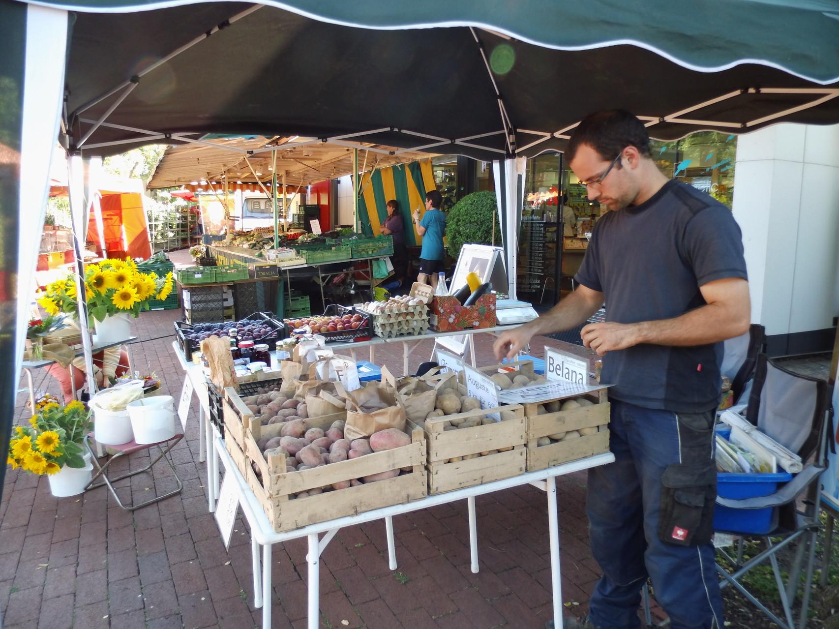der Jung-Bauer am Marktstand