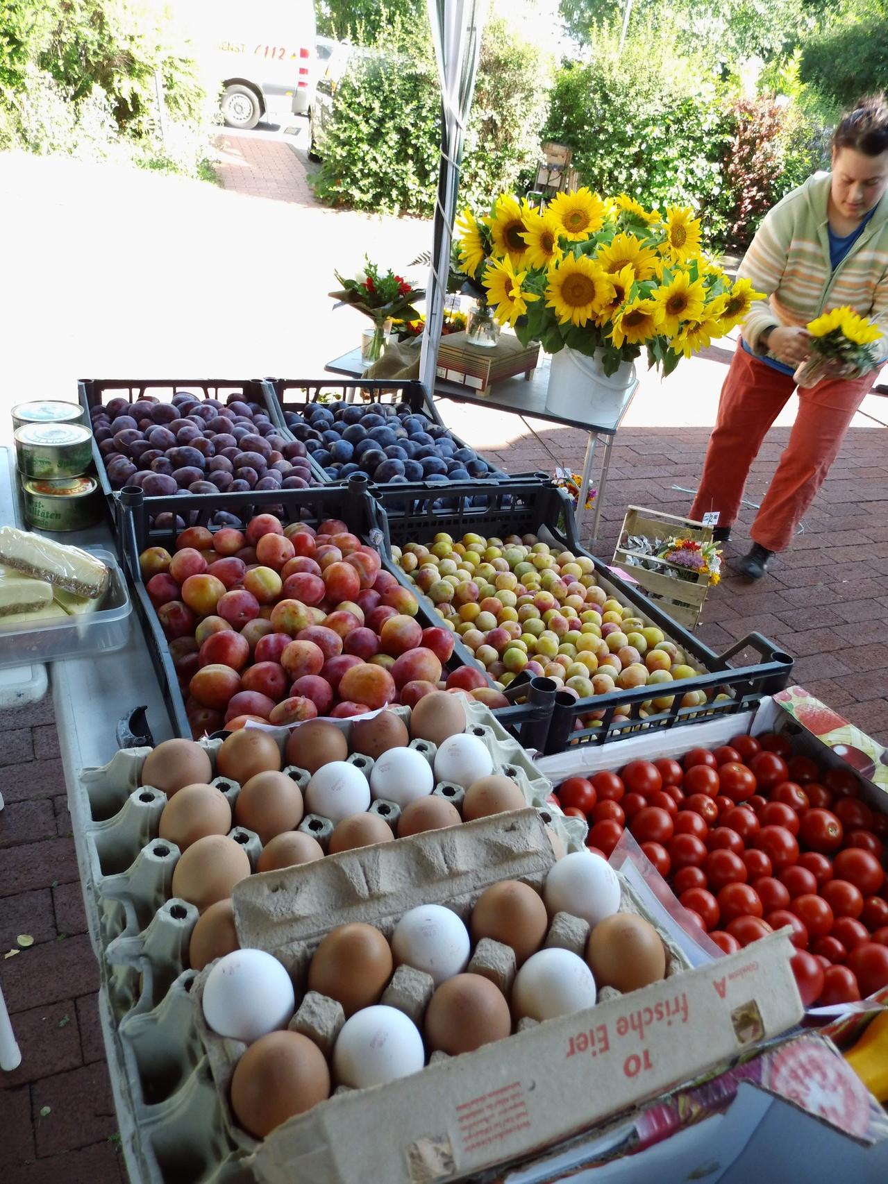 Marktstand mit unseren frischen Freiland-Eiern u. eigenem Obst