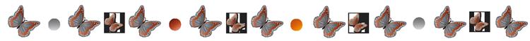 OSEZ CHANGER DE COMMUNICATION - CHOISIR LA COMMUNICATION QU'ON GARDE, PAS CELLE QU'ON JETTE.
