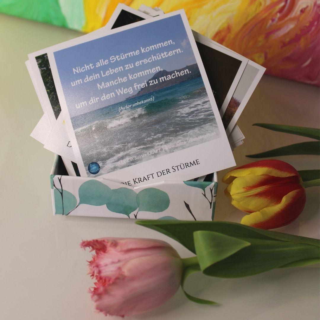 Zitate und Sprüche zu Lebenskraft und Lebensfreude