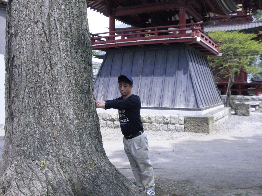 不動尊大樹の神木から採気