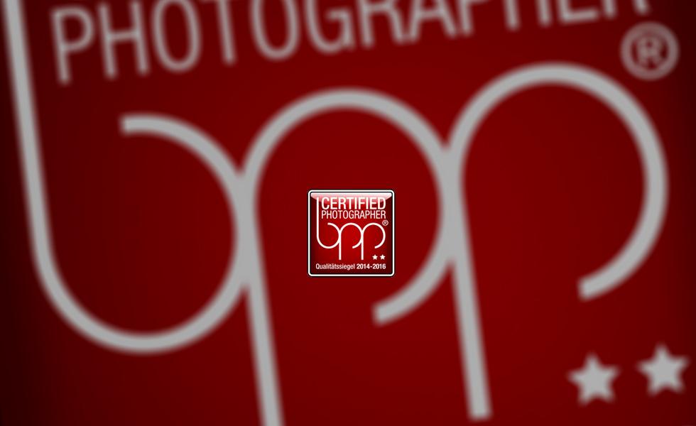 Auszeichnung Fotograf, ben Pfeifer Fotograf, lichtecht, fotostudio lichtecht, bund professioneller portraitfotografen, stern, Fotograf, stern Auszeichnung, lichtecht, Fotograf chemnitz, fotostudio chemnitz, prämiert, gutes fotostudio, Qualifikation