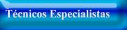 Técnicos Especialistas