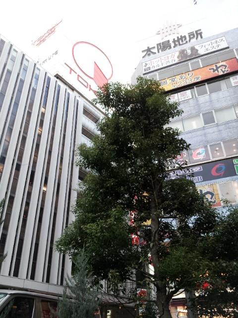 渋谷の一角