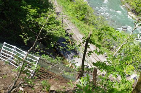 急斜面の鉄道近接木でもウッドタワー工法なら伐採可能。
