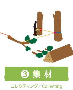 3:集材(コレクティング/Collecting)|ウッドタワー工法