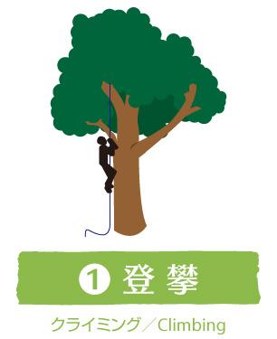 1:登攀(クライミング/Climbing)|ウッドタワー工法