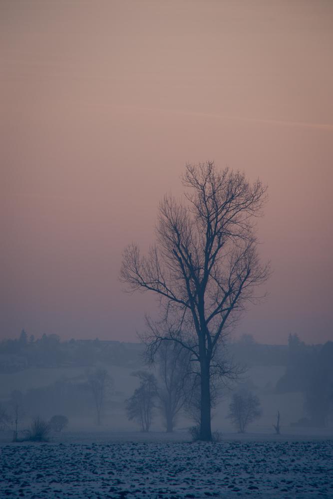 Winter-Sonne