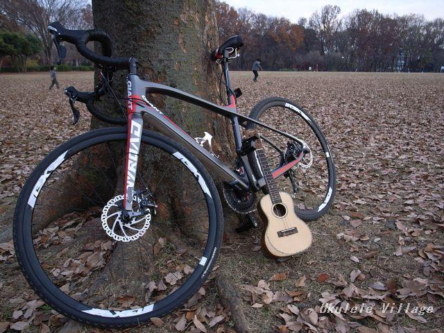 自転車(東村山中央公園)×ウクレレ