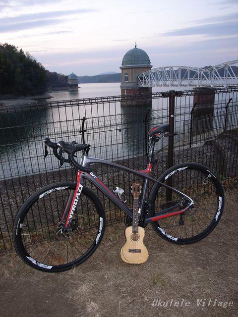 自転車(多摩湖)×ウクレレ