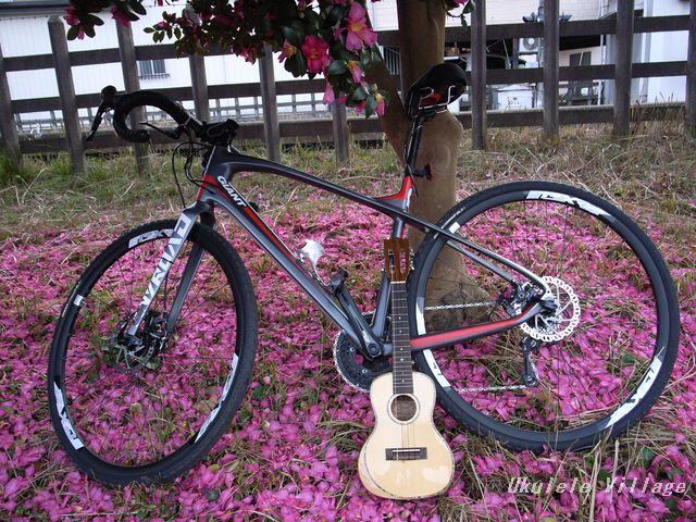 自転車(自転車道路)×ウクレレ