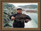 ※左は、作品NO.1 谷村さん吉田町楠ケ浦で55cm