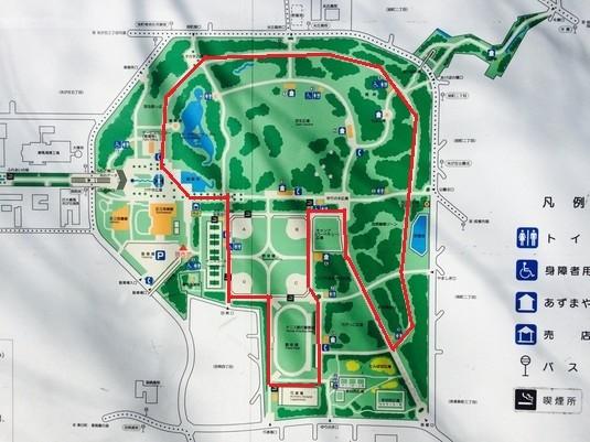 光が丘公園ランニングコース(赤線部分で約3キロ)