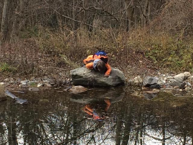 Naturbeobachtungen am Campodels-Weiher (Dezember 2019)