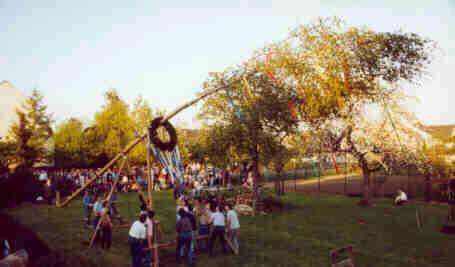 Die neuen Anfänge des Maibaumstellens auf der Pfarrwiese in Mülldorf.