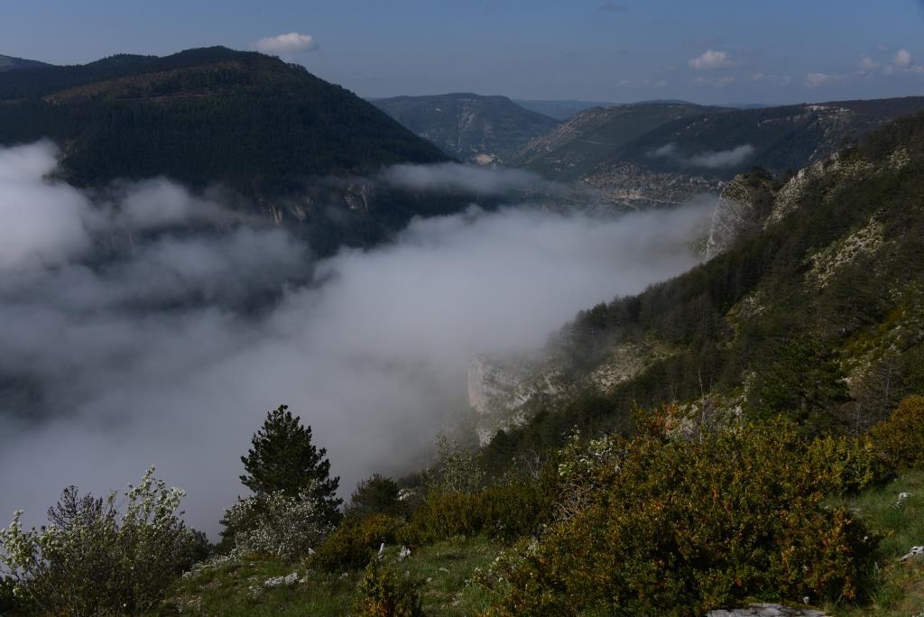 mer de nuages sur le Tarn