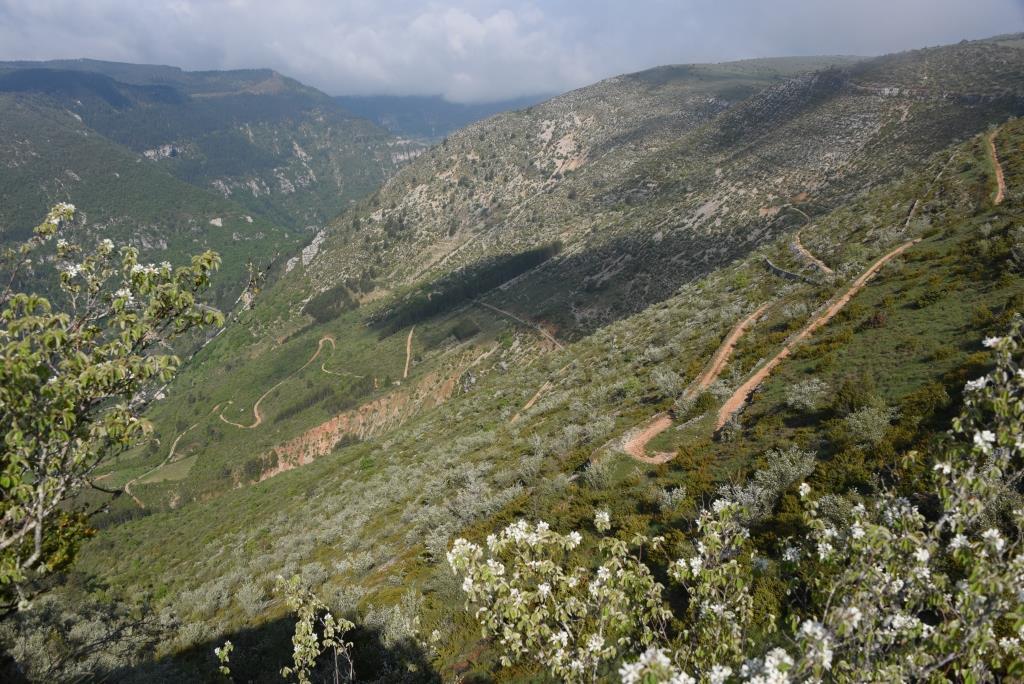 falaise du Sauveterre