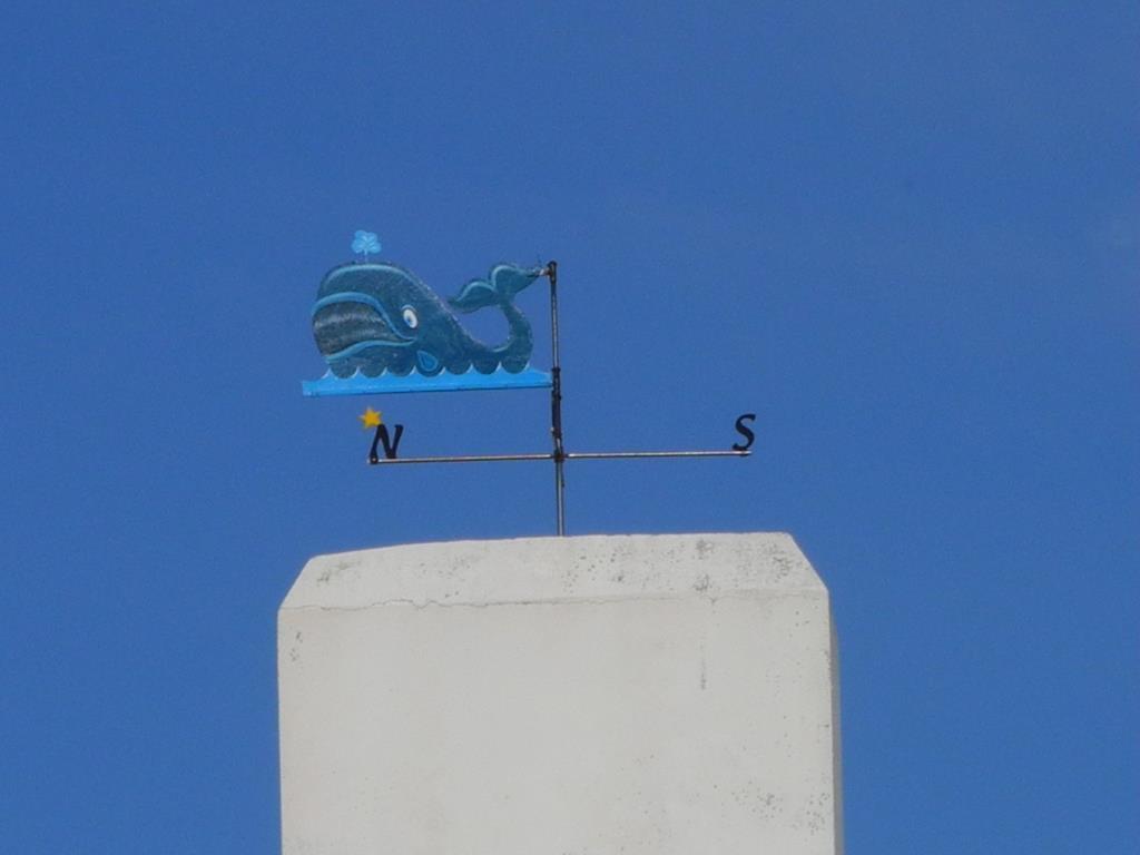 bleu sur bleu à Belle-Ile
