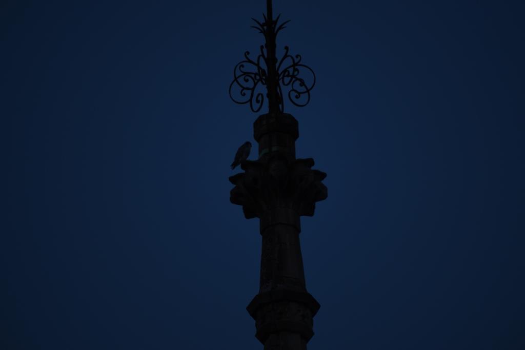 avant la nuit sur la ville
